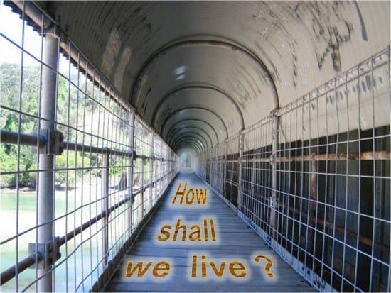 How shall I live